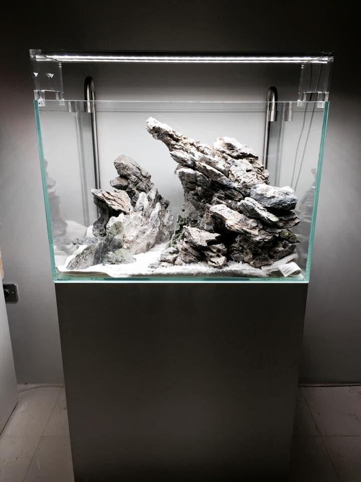 1000 images about aquarium on pinterest for Landscaping rocks for aquarium
