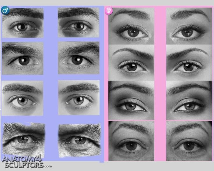human eyes and genders