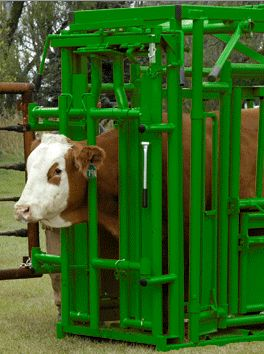 58 Best Images About Livestock Corrals And Cattle Handling