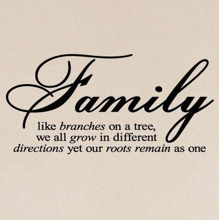 Family: like branches on a tree, we all grow in different directions, yet our roots remain as one.