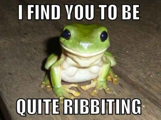 These puns are absolutely hilarious and can instantly brighten someone's day. | What's The Greatest Animal Pun You've Ever Heard?