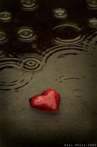 Heart --  [ CandaceWilsonArtStudio.com ]