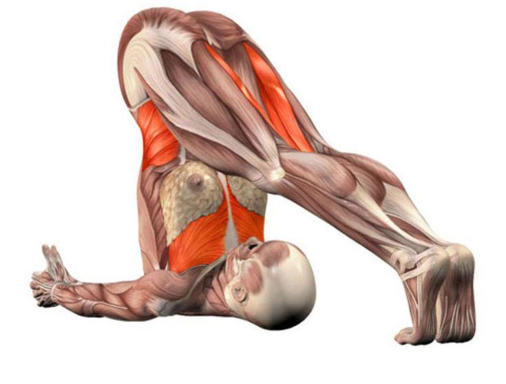 Гепатопротектор от йоги — лечим печень  не медикаментозным методом