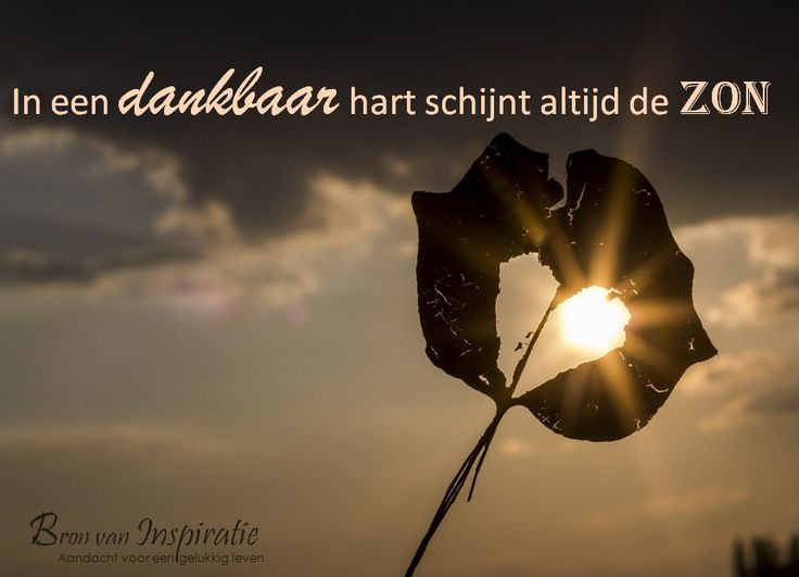 In een dankbaar hart schijnt altijd de zon. #dankbaarheid