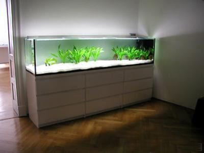 Malm kommoden als unterschrank aquaristik pinterest for Aquarium schrank