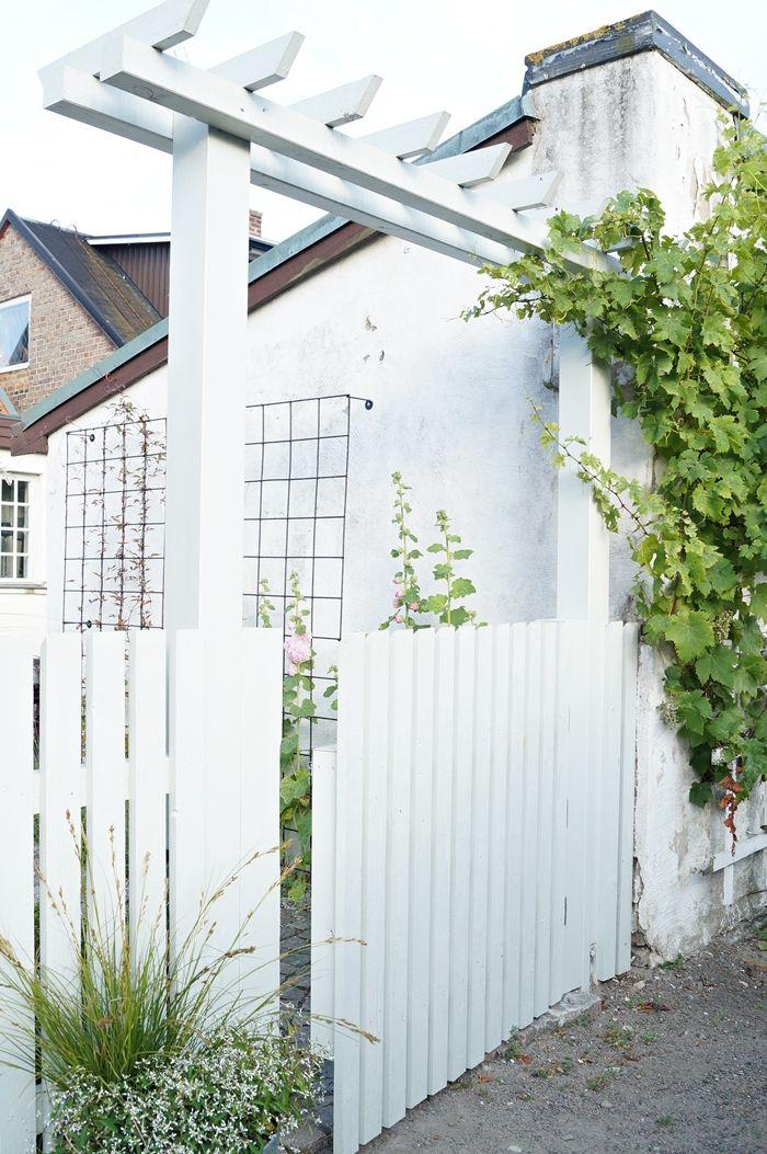 Pergola, staket / Fence