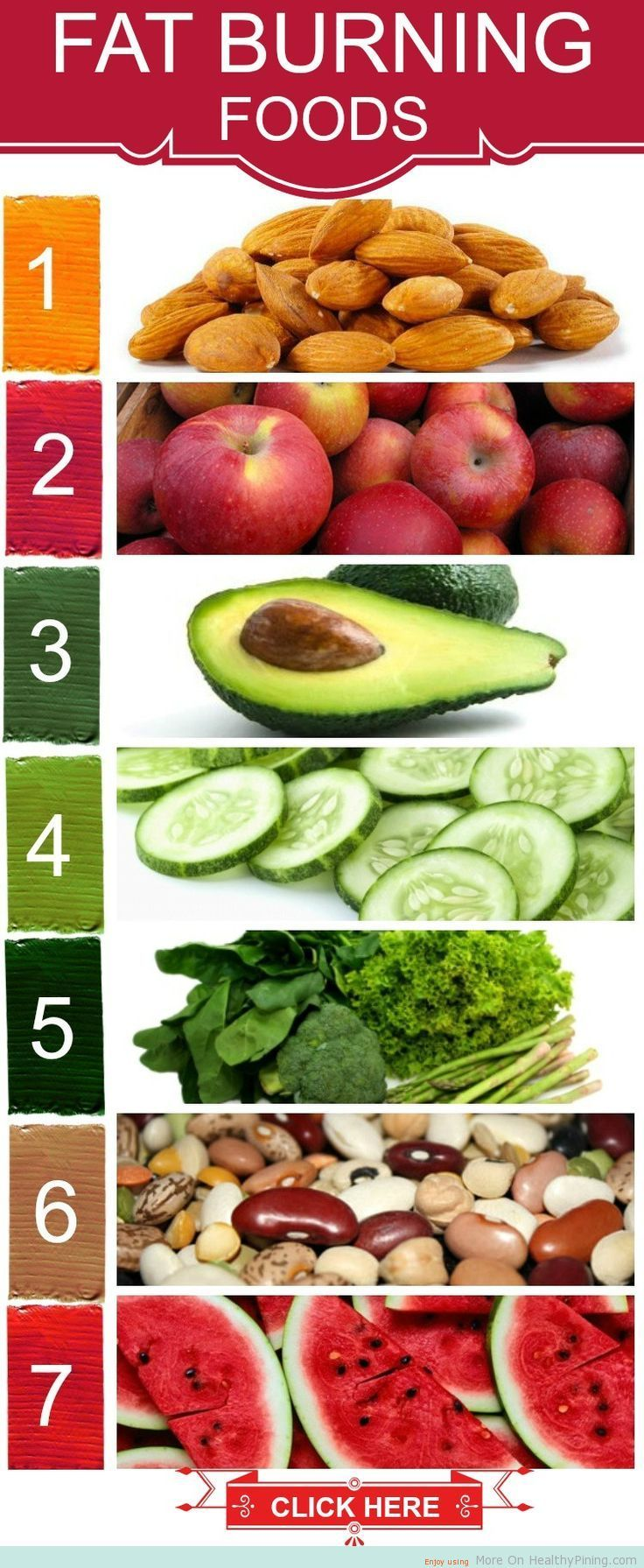 Top 10 Foods That Burn Belly Fat and Weigt Loss