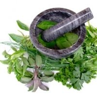 natural parenting toolbox: herbs and their uses