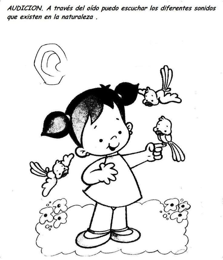 Resultado De Imagen Para Dibujos De Ninos Y Ninas Para Colorear Los Cinco Sentidos Sentido Del Oido Sentido Del Tacto