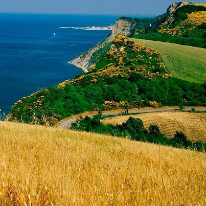 Gabicce, Pesaro-Urbino, Marche. . . Wish i could c0me here and feel the wind touch my face