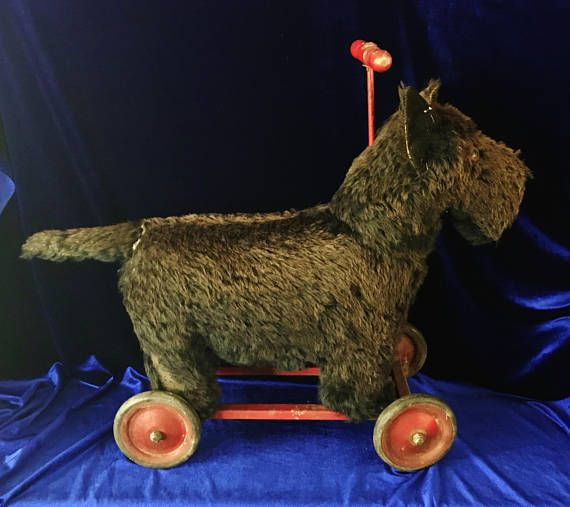 1920's Scotty dog toy with wheels. This is a large toy made for a young child to ride on. Wheels are made of metal and the handle on top is made of painted wood. The wheels on this can be steered. In antique condition. This toy was much loved and on one side, there is considerable