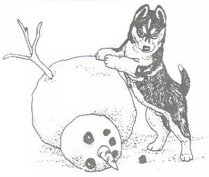 Siberian Husky Coloring Pages. husky coloring pages art fluxy s ...