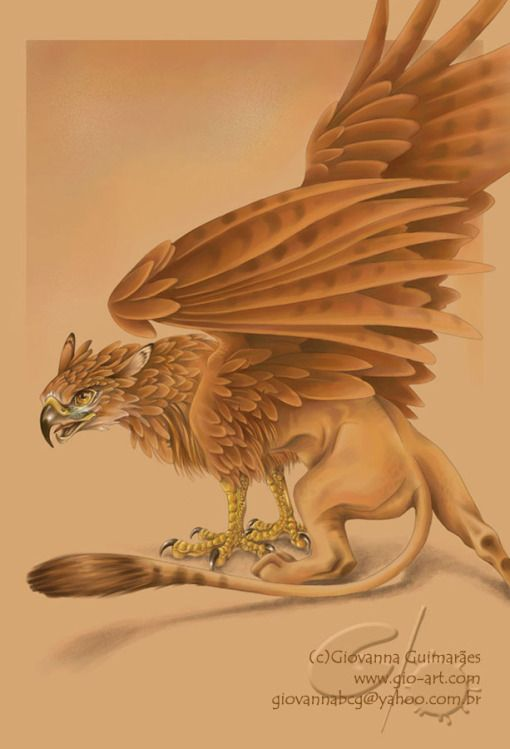 GRY-PHON grif·finˈgrifin  1.  a mythical creature with the head and wings of an eagle and the body of a lion, typically depicted with pointed ears and with the eagle's legs taking the place of the forelegs.