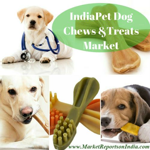 pet care in india Market report: petfood in india on the rise india's economic growth and rapid urbanization are driving its petfood industry forward what was once a motley crew of shop keepers casually selling a sparse and sometimes dubious assortment of shampoos and biscuits has now evolved into an us$800-million-plus industry.