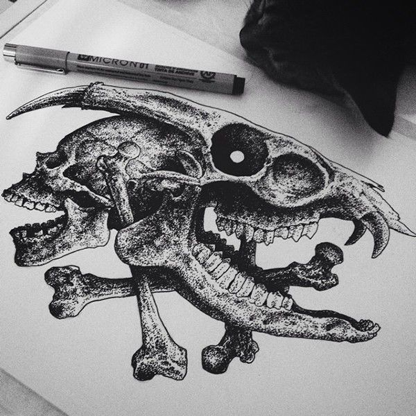 Pen and Ink - Skulls part. II on Behance