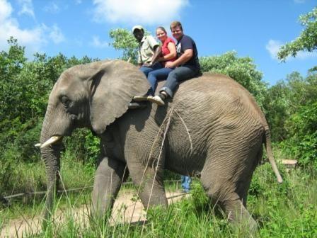 Elephant Sanctuary - Hazyview