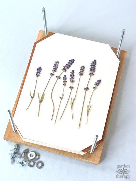 This is a great project - make a flower press to get perfectly pressed flowers every time. Pressed flowers are great in a garden journal, on cards, and the press itself makes a really thoughtful gift.