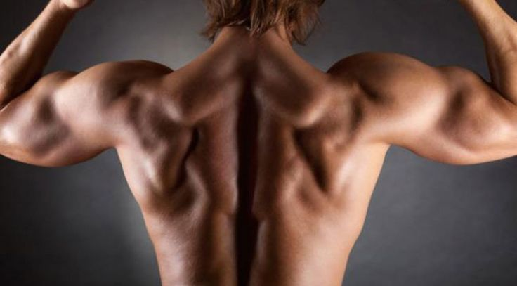 6 Best Exercises to Fix a Winged Scapula. Relieve back pain and increase your range of motion with these moves.