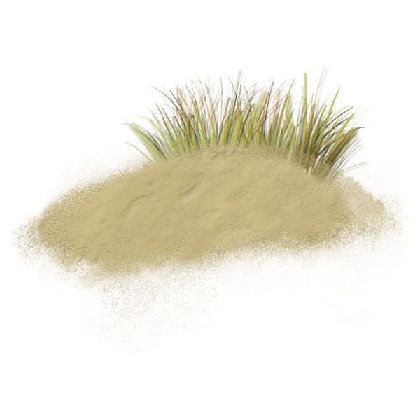 sand w grass.png ❤ liked on Polyvore featuring beach, backgrounds, fillers, sand, grass, effects and scenery