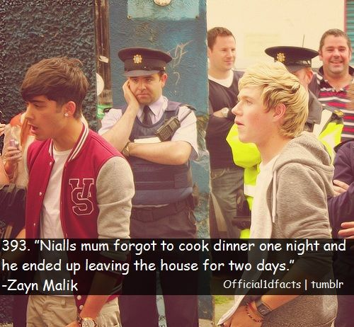 """ #NiallHoran 's mum forgot to cook dinner one night and he ended up leaving the house for two days.""- #ZaynMalik"