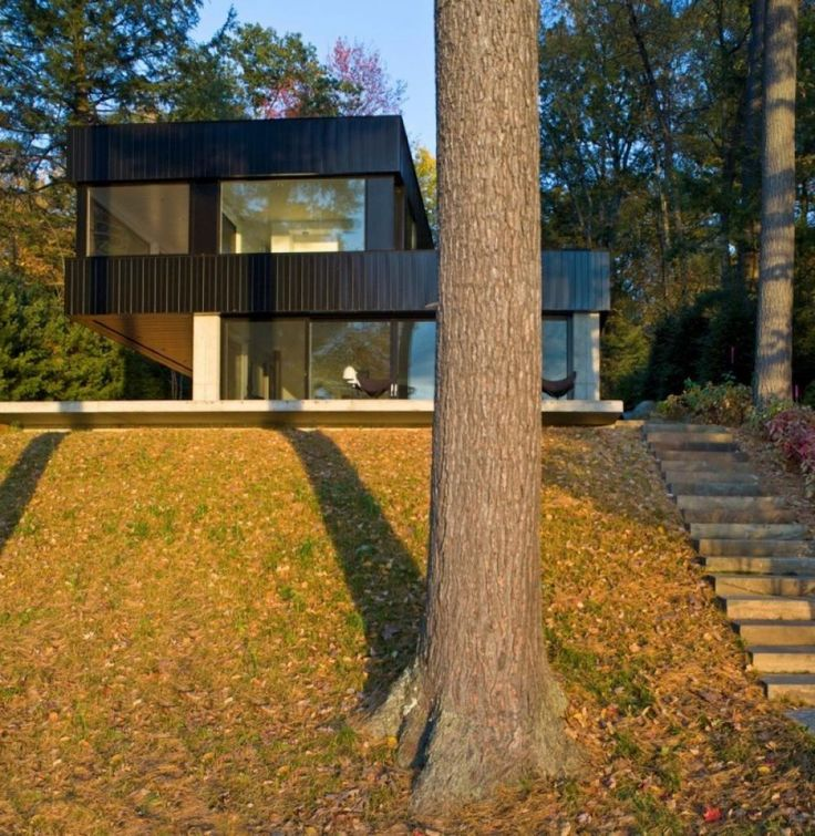 Box Shaped House In Forest Surrounded By Tree Cool And Small Minimalist  Modern Cube House Design