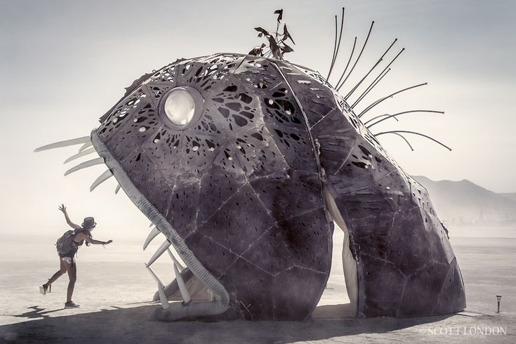 Illumacanth by Rebecca Anders at Burning Man 2015 (Photo by Scott London)