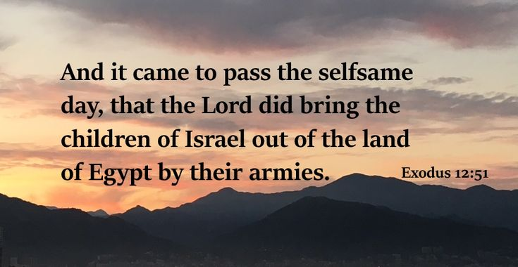 And it came to pass the selfsame day, that the Lord did bring the children of Israel out of the land of Egypt by their armies (Exodus 12:51) .... by Loving Gospel #HolyBible #Exodus #SongofMoses, #Moses, #JesusChrist, #God'slove #JesusisGod #Godislove #iamredeemed #baptism #Biblestudies  #lovinggospel