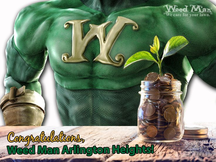 A big congratulations goes out to Brandon Burns and his team at Weed Man Lawn Care - Arlington Heights, IL! They recently became a part Weed Man USA's coveted Two Million Dollar Club. Way to go! Read more about Brandon's accomplishment at the link above.