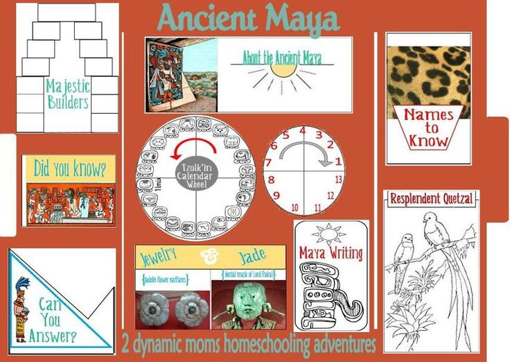 Aztecs, Incas and Mayans Study | Stacy Sews and Schools