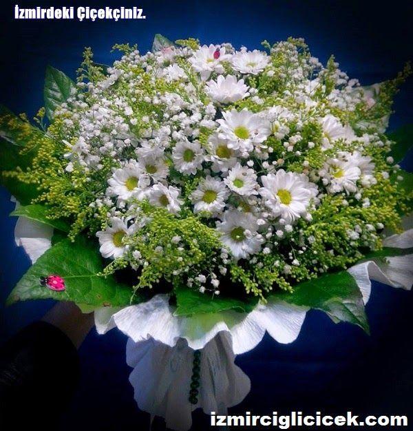 izmir çiğli beytaş çiçekçilik: ÇiÇEK, PAPATYA BUKETİ SİPARİŞİ İNCELEMEK İÇİN TIKL...
