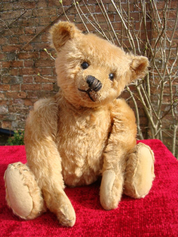 """This is Cotty a 16"""" apricot Steiff Teddy Bear c.1910 with his underscored F Steiff button in his ear. He is a really strong and handsome bear. His pads may have been expertly replaced some years ago. He has a good mohair cover of 95% and boot button eyes. He has a shaved muzzle and some extra stitches to his nose. All his joints work well. He is totally excelsior filled and has a great hump. A solid old boy who is really handsome in his apricot fur.  Description Date 1910 Make Steiff…"""