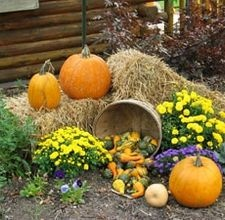 how to decorate a yard for a fall festival - Fall Yard Decorating Ideas