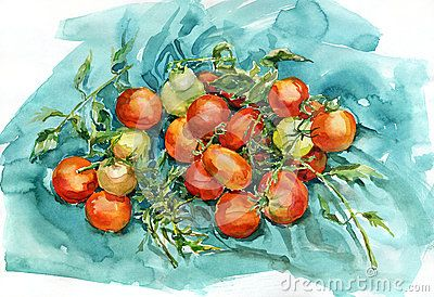 watercolor-tomatoes-piece-turquoise-fabric-painting-still-life-45086236.jpg (400×274)