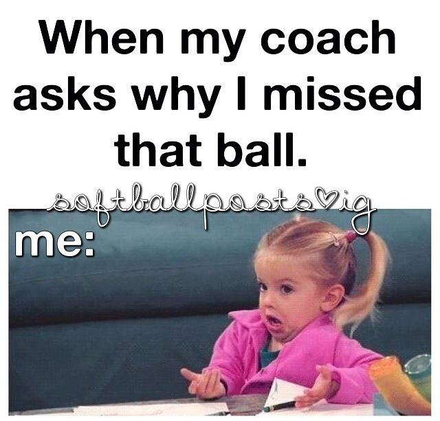 Funny softball post