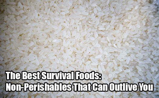 Wondering what you should be stockpiling when it comes to your food preps? Look no further! Check this list for the best survival non-perishable foods.