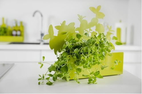 Form by objecthood - A rack for herbs