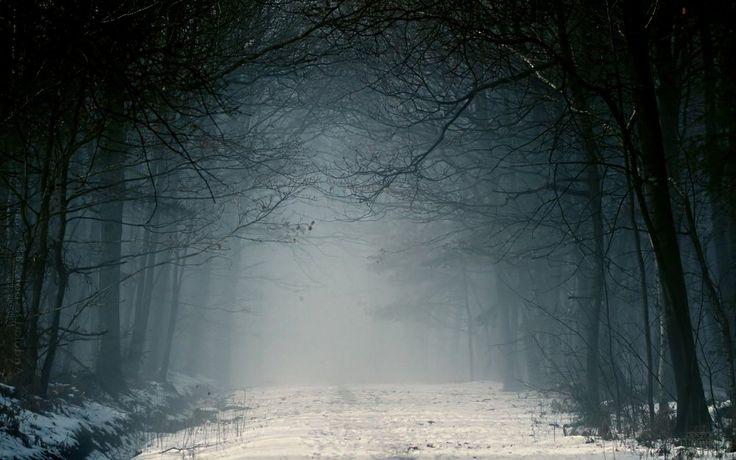 Wallpapers com a natureza ea paisagem de inverno com neve.