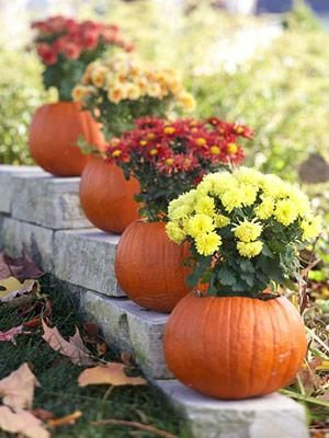 Fall decoration ideas: Put fall flowers in hollowed-out pumpkins for easy outdoor
