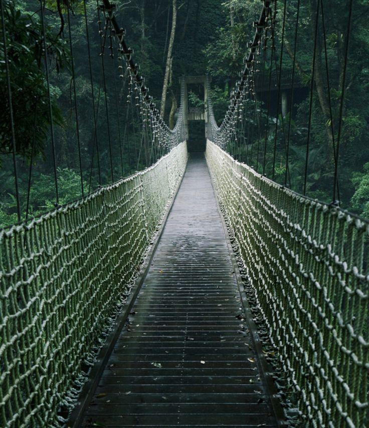 Criticising long swinging bridge photos opinion