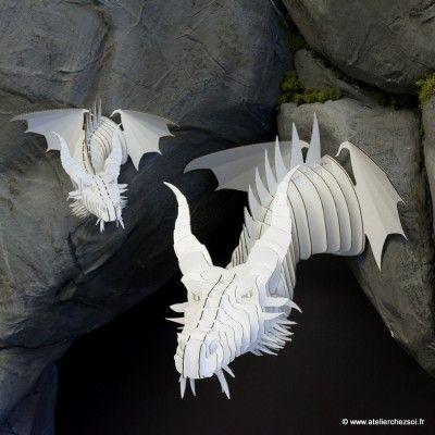 dragon_carton_SetM_blanc.jpg