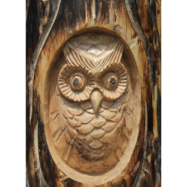 My next project. I want to carve an owl