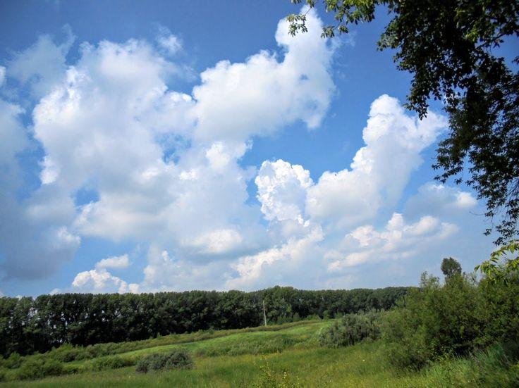 Фото - летопись  г. Кемерово и Кемеровской области(Фотоблог автора): За клубникой