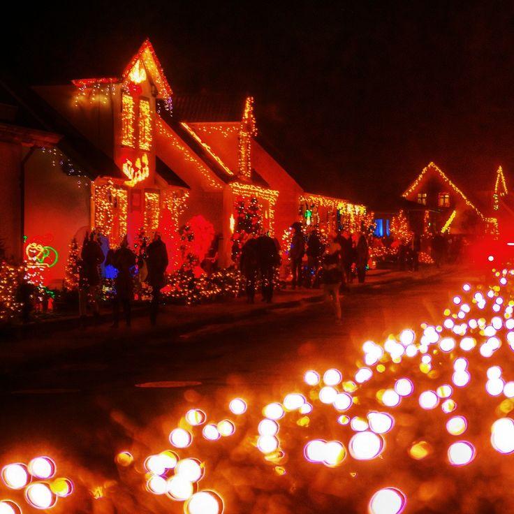456 Best Christmas Lights Images On Pinterest: 1083 Best Images About Christmas Lights On Pinterest
