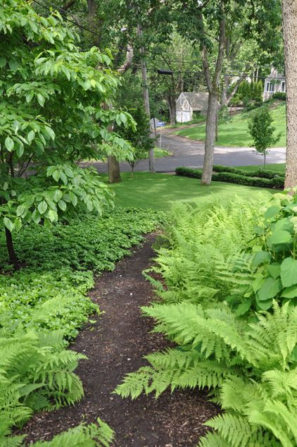 ferns with hosta and pachysandra  traditional landscape by leslie rohrer