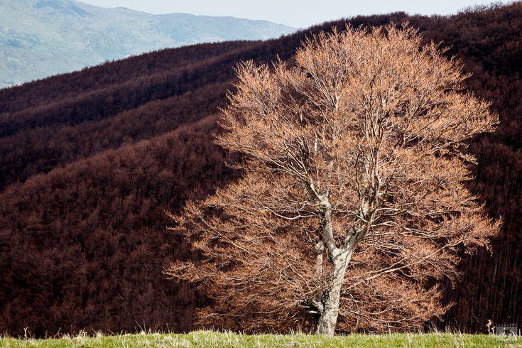 L'anomala #primavera del 2016 sulle #montagne dell'#appennino in #abruzzo