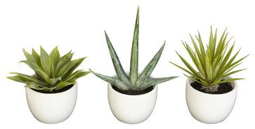 Nearly Natural Southwest Collection (Set of 3) - traditional - Artificial Flowers - Beyond Stores