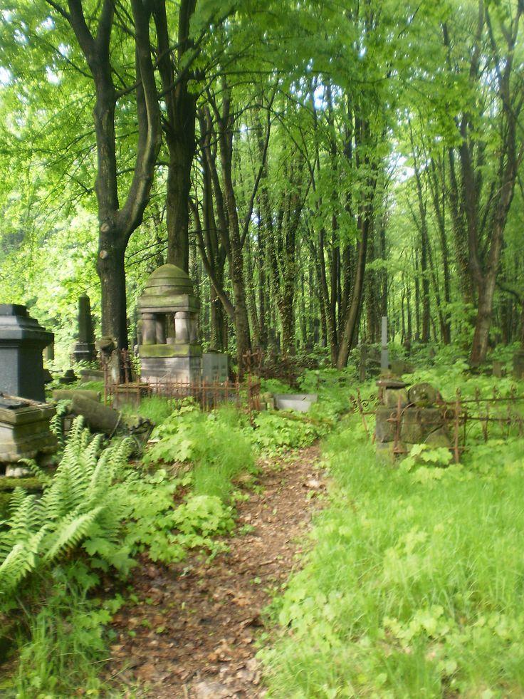 Łódz, Cmentarz żydowski, v198