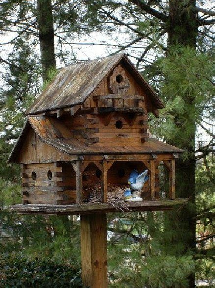 Rustic and large birdhouse (Some birds live better than I do...)