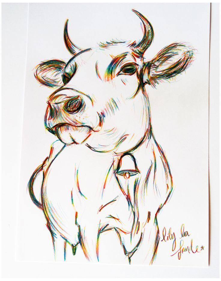 Meeeeuh ! - #cow #vache #campagne Illustration : Lily La Fronde