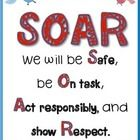 This is a FREE poster we are hanging in my middle school for our school-wide expectations this year.  The acronym stands for the following:  We wil...